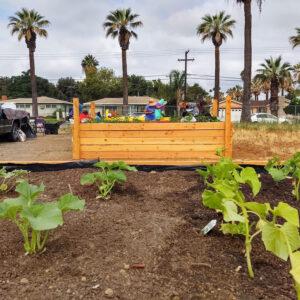 Community-Garden-52